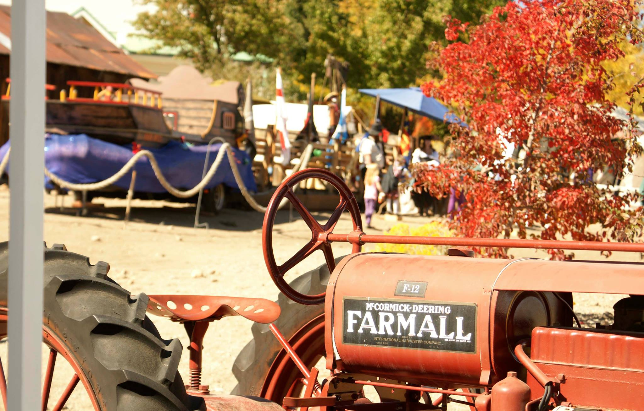 13Farmall-Heather_MacIver.jpg
